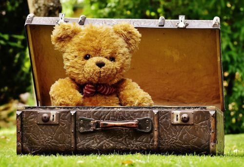 Teddy, turėti, Teddy & nbsp, Bear, bagažas, lagaminas, senas, sumuštas, sėdi, minkštas & nbsp, žaislas, pliušas & nbsp, žaislas, vaiko & nbsp, žaislas, mielas, Laisvas, žaislas, viešasis & nbsp, domenas, meškiukas bagaže