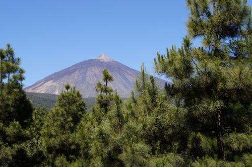 teide,Tenerifė,vulkanas,aukščiausių kalnų,gamta,žygis,Teide nacionalinis parkas,el teide,Ispanija,Kanarų salos,nacionalinis parkas teide,kalnas,Nacionalinis parkas,aukščiausiojo lygio susitikimas,Balearų salos,kalno teide,kraštovaizdis,Rokas