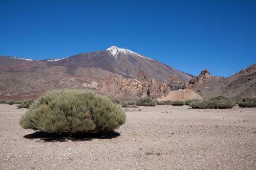 teide,vulkanas,kalnas,aukščiausiojo lygio susitikimas,pico del teide,teyde,Nacionalinis parkas,Tenerifė,Kanarų salos,3718 m,3718 metrai,3718,sniegas,mėlynas,balta,žalias,ruda,lava,lava rock,lavos laukai,mėnulio kraštovaizdis,krūmas,endeminis
