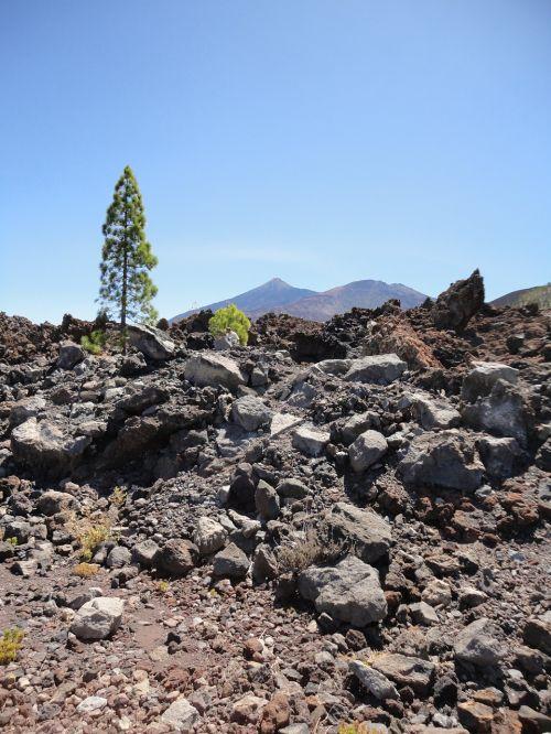 teide,Tenerifė,Kanarų salos,gamta,pico del teide,Ispanija,el teide,Nacionalinis parkas,geologija,akmuo,Teide nacionalinis parkas,Balearų salos,vulcan,Rokas,pico de teide,kraštovaizdis,kalno teide,dangus,vulkanas