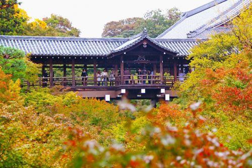 šventykla,tofukuji šventykla,šventykla,peizažas,klevo lapai,spalvinga,kyoto,Japonija