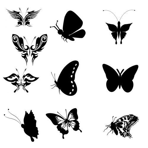 nustatyti, grupė, siluetai, 10, dešimt, drugeliai, juoda, balta, fonas, tatuiruotė, vabzdžiai, kontūrai, formos, dešimt drugelių