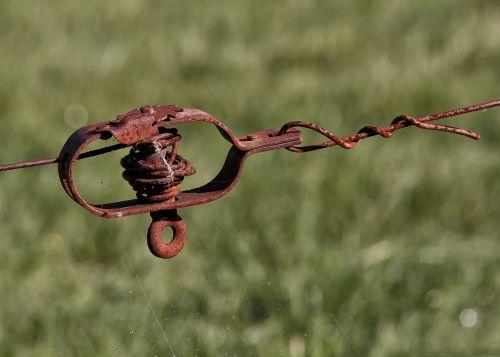 įtempiklis,tvora,viela,ganyklų tvora,metalas,sodo tvora,vielos tinklelio tvora,spygliuota viela,vartai,rusvas,nerūdijantis,nelaisvė,demarkacija,riba,barjeras,priveržimas,rusted,spygliuoto plieno tvora