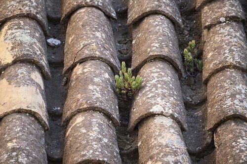 texas,molio plytelės,kaimiškas,stogas,senas,purvas,Ispanija