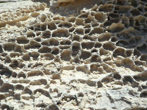 tekstūra,fonas,Rokas,išplauta,erozija,smėlio akmuo,modelis,šukos