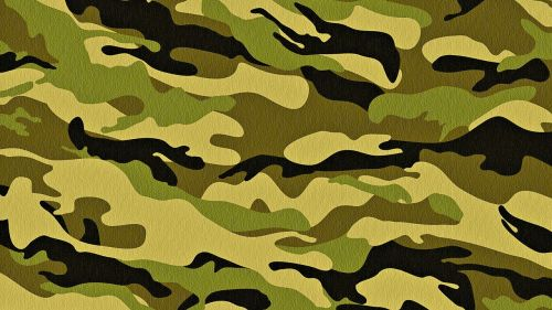 tekstūra,Camo,kareivis,paviršius,žalias,medžiaga,apranga,kovos,armija,medžiaga,apsauginis audinys,tekstūruotos