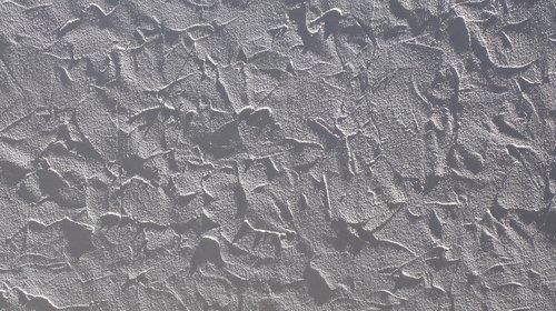 tekstūros, cementas, baltas