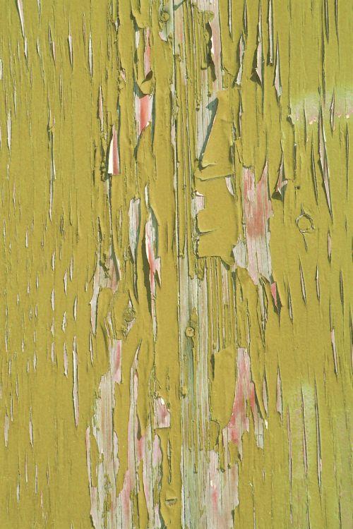 tekstūra, Grunge, fonas, žalias, dažyti, lupimasis, tekstūros žalia lupimasis dažai