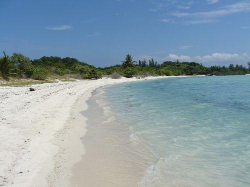 Tailandas,Koh Samui,sala,papludimys,palmės,jūra,šventė,asija,vanduo,kranto,į pietryčius