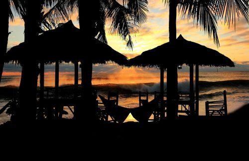 Tailandas,delnus,papludimys,atogrąžų,medis,gamta,vasara,jūra,kraštovaizdis,dangus,asija,kelionė,kokoso,vandenynas,rojus,augalas,palmė,sala,atostogos,kokoso medis,lauke,turizmas,kurortas,egzotiškas,smėlis,flora,natūralus,saulėtas,vaizdas,ramus,vaizdingas,gamtos fonai,aplinka,grazus krastovaizdis,saulėtas dangus,peizažas