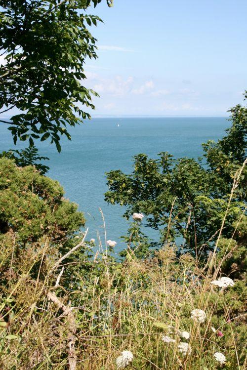jūra, vasara, buriavimas, taikus, idiliškas, šventė, mėlynas, žolė, jūra & nbsp, peržiūra, žvejyba, viliojantis, skambinanti jūra