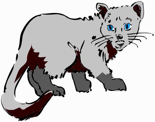 katės gyvenimas, eskizas, iliustracija, katė, naminis gyvūnėlis, gyvūnas, lenktynės, plėšrūnas, medžiotojas, užsispyręs, paliesti, įvedimas, gyvenimas, žaismingas, subraižyti, katės akys, uodega, juoda & nbsp, balta, katės gyvenimas 2