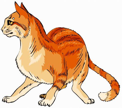 katės gyvenimas, eskizas, iliustracija, katė, naminis gyvūnėlis, gyvūnas, lenktynės, plėšrūnas, medžiotojas, užsispyręs, paliesti, įvedimas, gyvenimas, žaismingas, subraižyti, katės akys, uodega, spalvos, katės gyvenimas 5