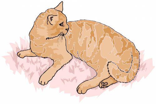 katės gyvenimas, eskizas, iliustracija, katė, naminis gyvūnėlis, gyvūnas, lenktynės, plėšrūnas, medžiotojas, užsispyręs, paliesti, įvedimas, gyvenimas, žaismingas, subraižyti, katės akys, uodega, raudona, katės gyvenimas 7