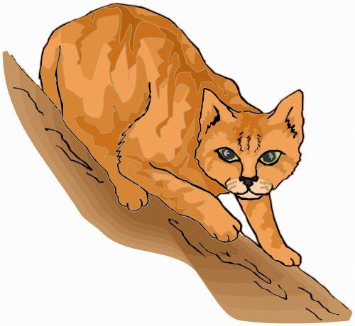 katės gyvenimas, eskizas, iliustracija, katė, naminis gyvūnėlis, gyvūnas, lenktynės, plėšrūnas, medžiotojas, užsispyręs, paliesti, įvedimas, gyvenimas, žaismingas, subraižyti, katės akys, uodega, raudona, katės gyvenimas 8
