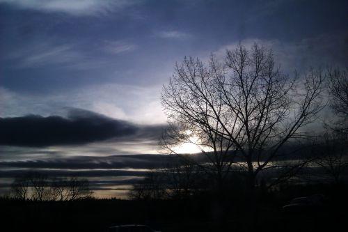 aušra, debesys, senas & nbsp, medis, kritimo, gamta, dangus, saulė, saulėlydis, Aušra