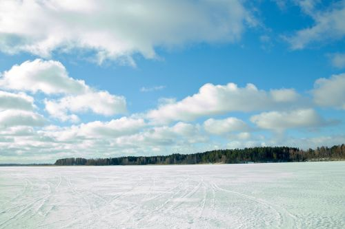 pirmas sniegas,debesys,sniegas,žiema,miškas,rytas,Rusija,po sniegu