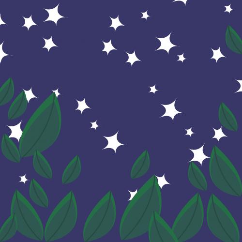 naktinis dangus,žvaigždė,naktis,šviesa,dangus,naktinis vaizdas,paukščių takas,žvaigždutė,naktinis dangus,blizgantis,mėnulio šviesa,miškas,kalnas,vakare,tamsa,nemokama vektorinė grafika