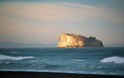 Ramusis vandenynas,banga,naršyti,putos,jūra,jūros dugnas,smėlis,papludimys,kranto,saulėlydis,sala,paukščiai