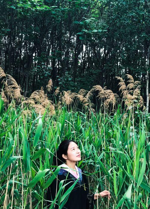 laukiniai,charakteris,žolė