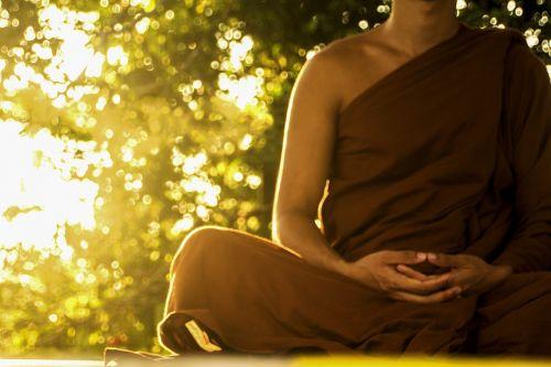 teravada budizmo,Theravada vienuolis,budistinis,bhikkhu,meditacija,medituojantis,religija,religinis