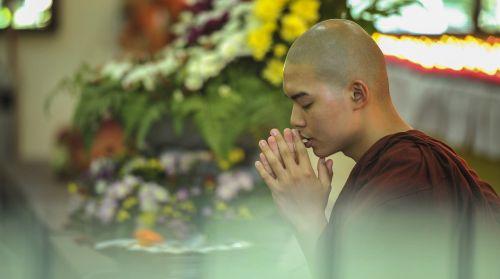 teravada budizmo,pagarba,palaiminimas,mokėti pagarbą,re,tikėjimas,melstis,religija,garbinimas,pagarbiai,religinis,ceremonija,vienuolis,budistinis,vienuolis,Theravada vienuolis,dvasinis,ordinuotos,budizmas,meldžiasi,šventykla