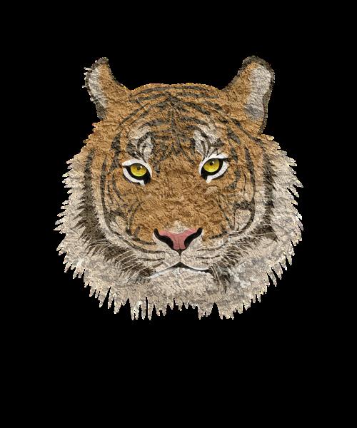 tigras, katė, gyvūnas, leopardas, puma, Cub, tigras, liūtas, augintiniai, miškas, Puma, pixabay, poli, trikampio formos, 3d forma, tigro atsargos, tigro wiki, tigro vaizdas, tigro vaizdas, tigro iliustracija, tigro vektorius, tigro png, tigro logotipas, tigro grafika, tigro dizainas, tigro marškinėliai, tigro dovana, fono tekstūra, abstraktus fonus, fono paveikslėliai, foninis modelis, žemas poli, trikampis, fonas, abstraktus, dizainas, tekstūra, pristatymas, brošiūra, be honoraro mokesčio, pikseliai, be honoraro mokesčio