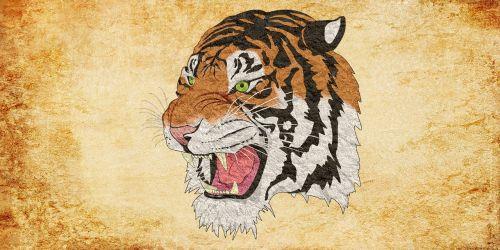 tigras, Gepardas, liūtas, gyvūnas, vintage, jaguar, leopardas, panther, Puma, Cub, kačių, miškas, poli, trikampio formos, 3d forma, tigro atsargos, tigro wiki, tigro vaizdas, tigro vaizdas, tigro iliustracija, tigro vektorius, tigro png, tigro logotipas, tigro grafika, tigro dizainas, tigro marškinėliai, tigro dovana, fono tekstūra, abstraktus fonus, fono paveikslėliai, pixabay, foninis modelis, žemas poli, trikampis, fonas, abstraktus, dizainas, tekstūra, pristatymas, brošiūra, be honoraro mokesčio, pikseliai, be honoraro mokesčio