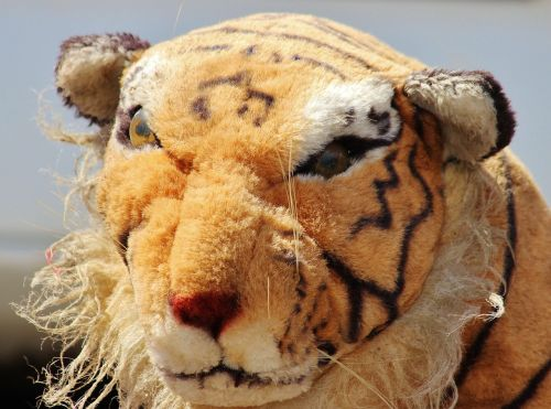 tigras,iškamša,senas,pasinerti,meškiukas,minkštas žaislas,žaislai,minkštas,linksma