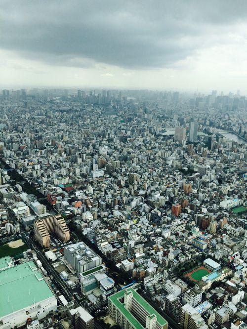 Tokyo,miestas,tokyo dangus medis,turizmas,paukščio skrydžio vaizdas,Japonija,kraštovaizdis,pastatas,verslas