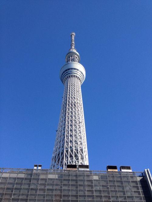 tokyo dangus medis, Japonija, kelionė, didmiestis, Tokyo, panorama, bokštas, vaizdas