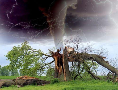 tornadas,audra,medžio šaka,rainstorm,griauna,stichinė nelaimė,žaibo audra,griauna,žalą,uraganas,žaibas,audros žalos,klimatas,nelaimė,oras,pavojus,ciklonas,audros debesys,sūkurys,meteorologija,debesys,lietus,twister,dangus,piltuvėlis