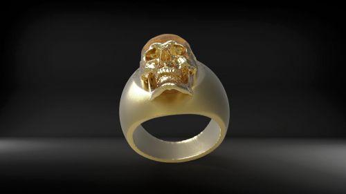 žiedas, auksas, kaukolė, auksinis, auksinis & nbsp, žiedas, blizgantis, pirštas & nbsp, žiedas, auksas & nbsp, žiedas, metalinis, simbolis, galvos žiedas auksas