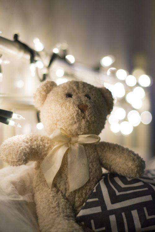 žaislas,meškiukas,pliušinis talismanas,linksma,pliušas,dovanos,talismanas,sėdi