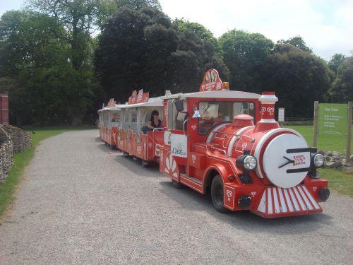žaislinis traukinys,traukinys,miniatiūrinis traukinys,mažas traukinys,linksmas traukinys,žaislas,lokomotyvas,linksma,vaikas,vaikystę,transportas