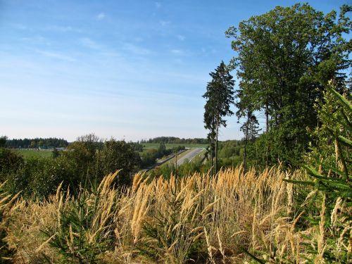 trasa,lenktynių trasa,grandinė,Brno,lenktynės,medis,kraštovaizdis,gamta,ruduo