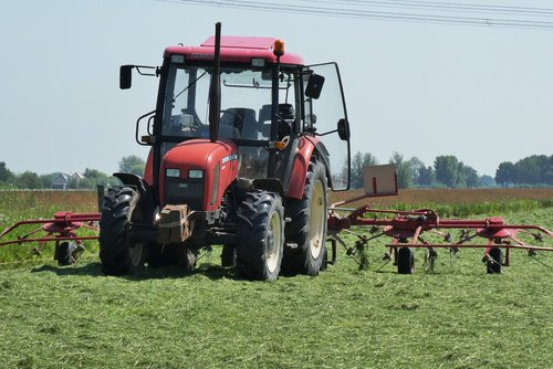 traktorius, žolė, Žemdirbystė, žemės ūkio transporto priemonė, Hay, derlius, ūkininkas, ūkio traktorius, kaimo, žemės ūkio, žemės ūkio transporto priemonės