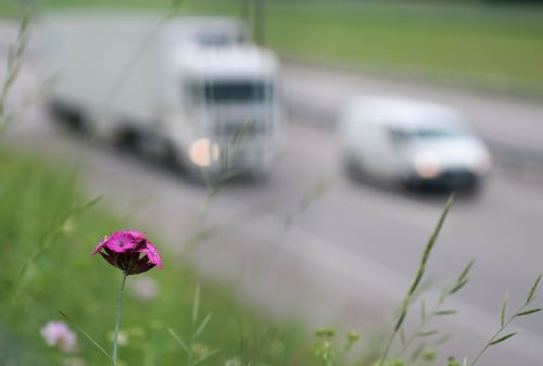 eismas,greitkelis,gamta,kelyje,aplinka,automobiliai,išmetimas,tarša,smogas,dūmai,aplinkos apsauga,toksiškas