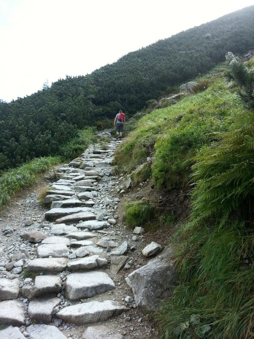 takas,juoda takas,kalnai,kelias,žvyro kelias,takas iki penkių tvenkinių slėnio