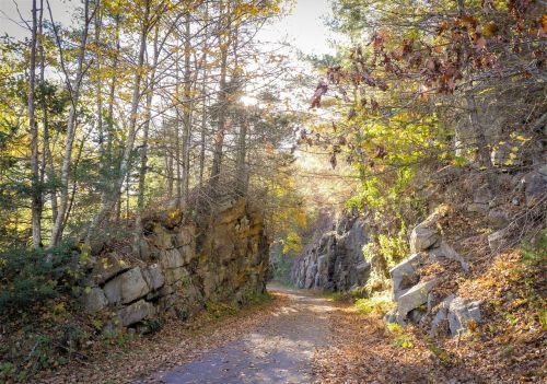takas,vaikščioti,gamta,vaikščioti,žygiai,nuotykis,kelionė,pasivaikščiojimas,lauke,kraštovaizdis,kuprinė,veikla,paleisti,turistinis,fitnesas