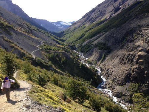 takas,patagonia,gamta,torres del paine,Chilean patagonia
