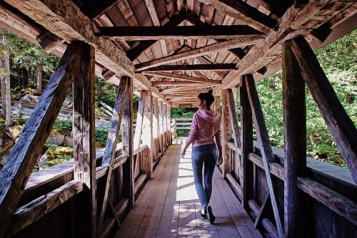 kelionė,tiltas,mediena,orientyras,vasara,gamta,kelionė,nuotykis,keliautojas,žmonės,kelionė