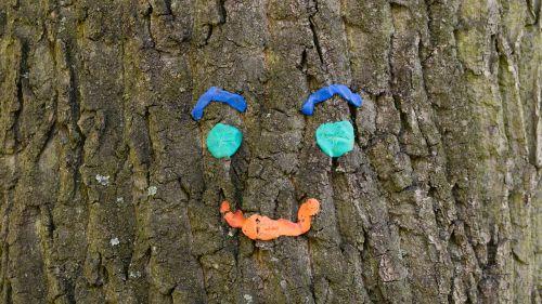 medis,veidas,parkas,laimingas,linksmas,menas,medžio dvasia,akys,nosis,Burna,gamtos dvasia,gamta,žievė