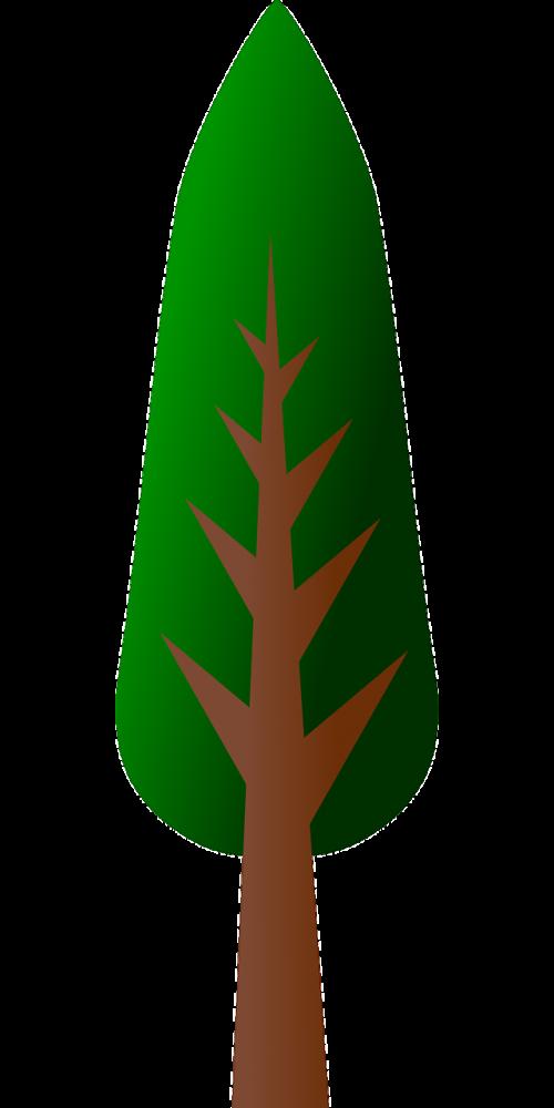 medis,miškas,augalas,kraštovaizdis,natūralus,aplinka,peizažas,lauke,lapija,vaizdingas,bagažinė,ekologija,ramus,dykuma,nemokama vektorinė grafika
