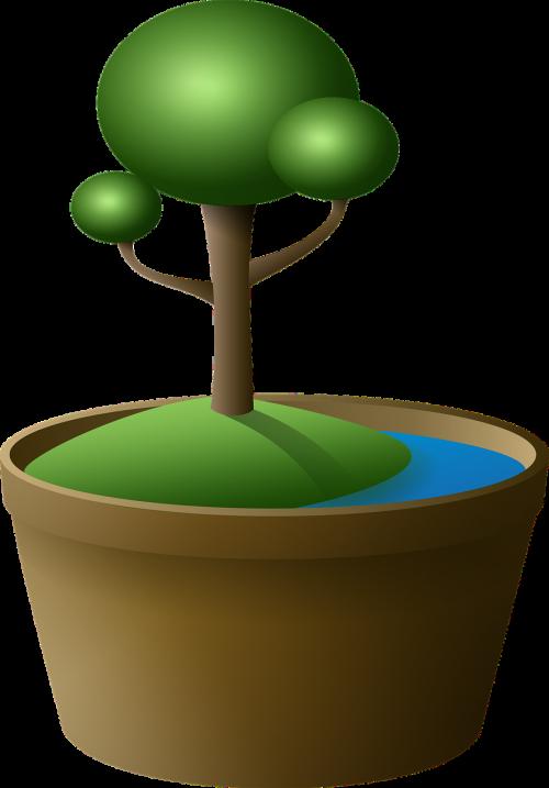 medis,bonsai,vazos,sala,žalias,ežeras,animacinis filmas,miniatiūrinė,mažas,paprastas,kalnas,bagažinė,augalas,gamta,png,iliustracija