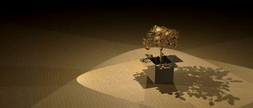 medis,ekologija,mediena,kartonas,gamta