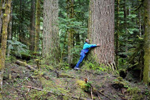 medis,apkabinti,meilė,gamta,žalias,parkas,lauke,aplinka,vyras,asmuo,miškas,bagažinė,apkabinimas,išsaugojimas,apsauga,ekologija,aplinkosaugininkas