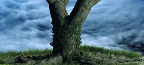medis,dangus,gamta,fonas,debesys,kraštovaizdis,mėlynas,dengtas dangus