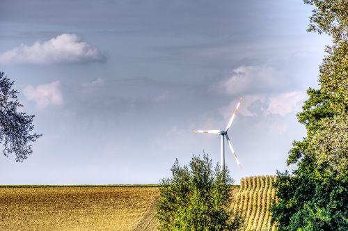 medis,pinwheel,vėjo energija,energija,mėlynas,aplinkosaugos technologijos,rotorius,dabartinis,pasukti,elektros energijos gamyba,vėjo energija,maitinimas,atsinaujinanti energija,Vėjo turbina,kraštovaizdis,laukai,rotoriaus geležtės,propeleris,dangus,hdr,didelis dinaminis diapazonas,kontrastas