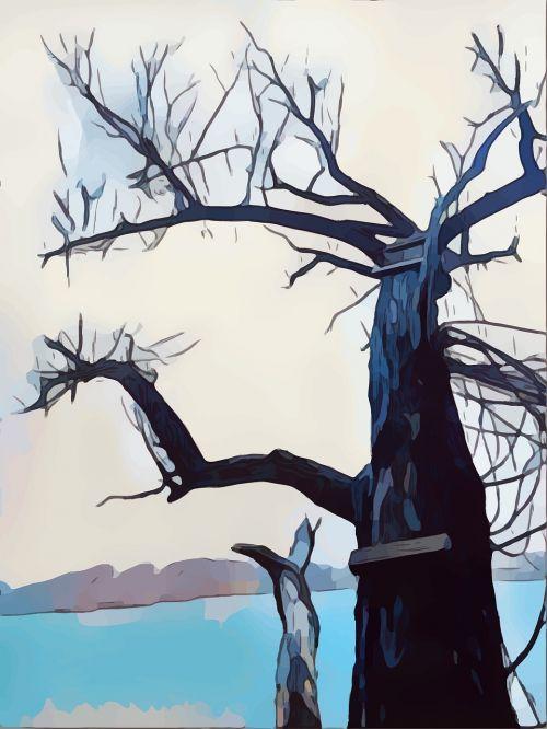medis, Knygos viršelis, ežeras, žiema, šaltas, sušaldyta, alpinizmas, padengti, dizainas, dekoratyvinis, lapinės diena, mediena, piešimas, meno, gamta, be honoraro mokesčio